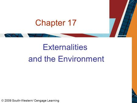 Chapter 17 Externalities and the Environment © 2009 South-Western/ Cengage Learning.