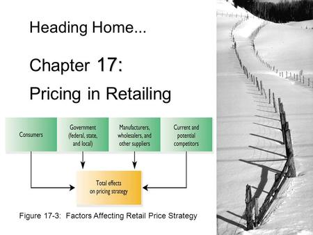 Figure 17-3: Factors Affecting Retail Price Strategy