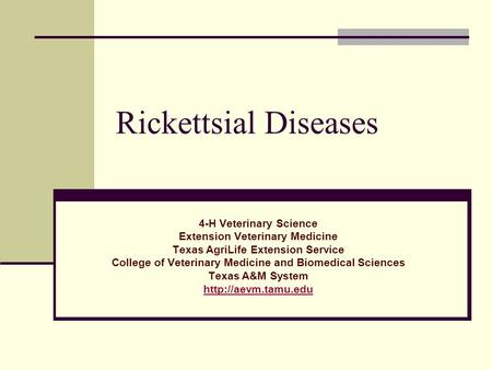 Rickettsial Diseases 4-H Veterinary Science Extension Veterinary Medicine Texas AgriLife Extension Service College of Veterinary Medicine and Biomedical.