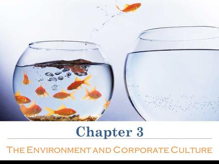Chapter 3 The Environment and Corporate Culture. The elements of the world constantly change The external organizational environment includes all outside.