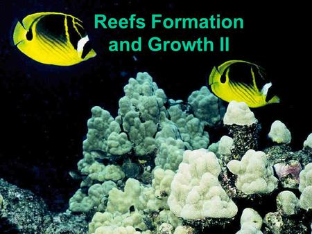 Reefs Formation and Growth II. REEF CEMENTERS Encrusting Coraline Algae Encrusting Corals.