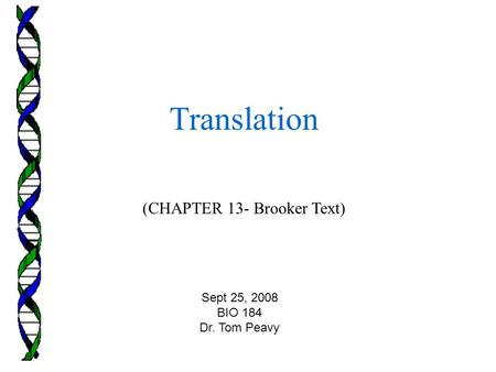(CHAPTER 13- Brooker Text) Translation Sept 25, 2008 BIO 184 Dr. Tom Peavy.