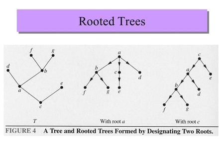 Rooted Trees. More definitions parent of d child of c sibling of d ancestor of d descendants of g leaf internal vertex subtree root.
