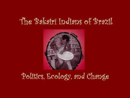 The Bakairí Indians of Brazil Politics, Ecology, and Change.