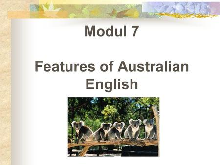 Modul 7 Features of Australian English. How Australian – English Developed  The First 150 Years  The first European Australian born in Australian 