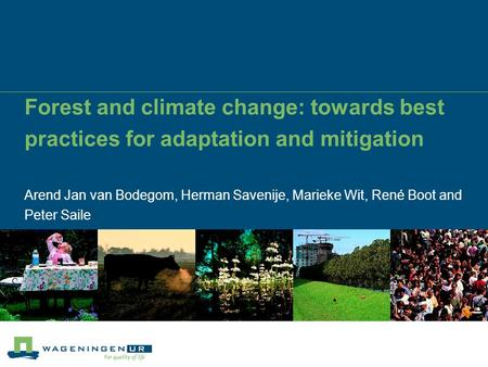 Forest and climate change: towards best practices for adaptation and mitigation Arend Jan van Bodegom, Herman Savenije, Marieke Wit, René Boot and Peter.