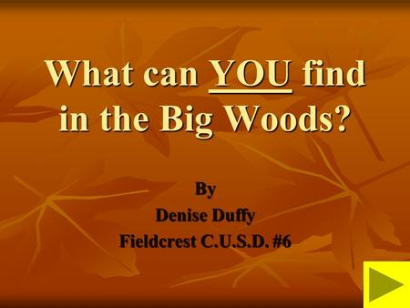 What can YOU find in the Big Woods? By Denise Duffy Fieldcrest C.U.S.D. #6.