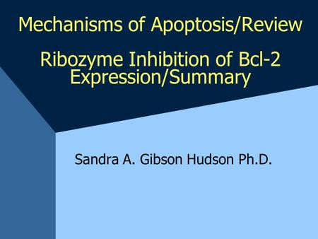 Mechanisms of Apoptosis/Review Ribozyme Inhibition of Bcl-2 Expression/Summary Sandra A. Gibson Hudson Ph.D.