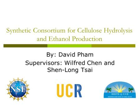 Synthetic Consortium for Cellulose Hydrolysis and Ethanol Production By: David Pham Supervisors: Wilfred Chen and Shen-Long Tsai.