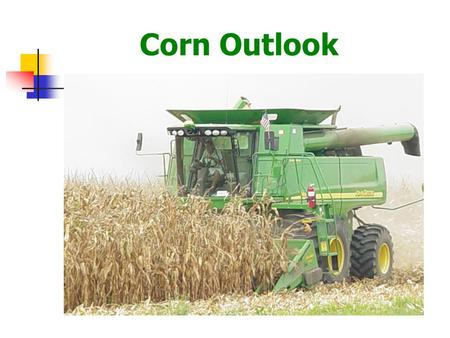 Corn Outlook. U.S. & Foreign Coarse Grain Production U.S. share of world production: 90-91: 28.1% 08-09: 29.6%