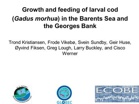 Growth and feeding of larval cod (Gadus morhua) in the Barents Sea and the Georges Bank Trond Kristiansen, Frode Vikebø, Svein Sundby, Geir Huse, Øyvind.