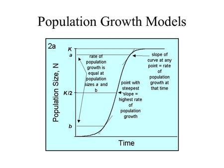 Population Growth Models. Ro – Net Reproductive Rate.