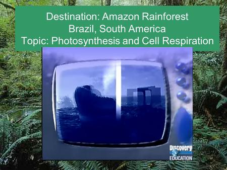 Destination: Amazon Rainforest Brazil, South America Topic: Photosynthesis and Cell Respiration.