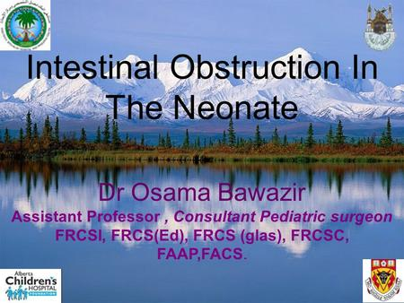 Intestinal Obstruction In The Neonate Dr Osama Bawazir Assistant Professor, Consultant Pediatric surgeon FRCSI, FRCS(Ed), FRCS (glas), FRCSC, FAAP,FACS.