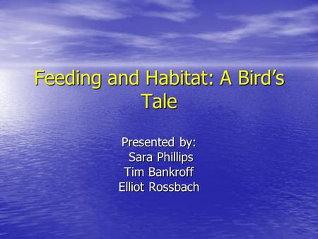 Feeding and Habitat: A Bird's Tale Presented by: Sara Phillips Sara Phillips Tim Bankroff Elliot Rossbach.