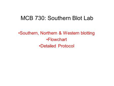 MCB 730: Southern Blot Lab Southern, Northern & Western blotting Flowchart Detailed Protocol.