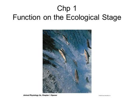 Chp 1 Function on the Ecological Stage. Animal Physiology: Study of how animals function Importance: -For basic understanding of physiology since human.