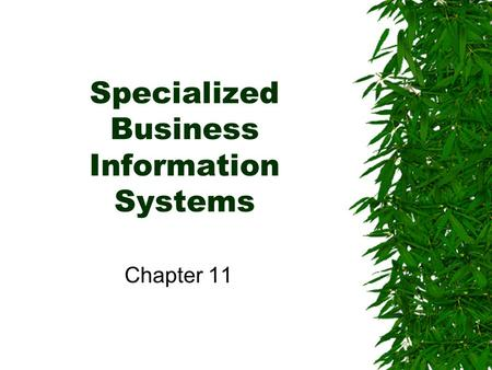 Specialized Business Information Systems Chapter 11.