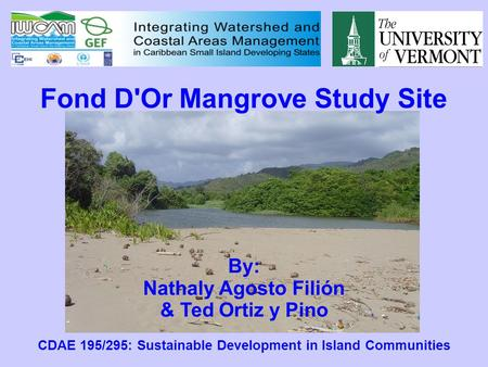 Fond D'Or Mangrove Study Site By: Nathaly Agosto Filión & Ted Ortiz y Pino CDAE 195/295: Sustainable Development in Island Communities.