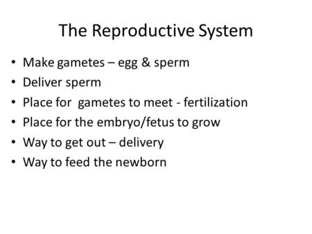 The Reproductive System Make gametes – egg & sperm Deliver sperm Place for gametes to meet - fertilization Place for the embryo/fetus to grow Way to get.