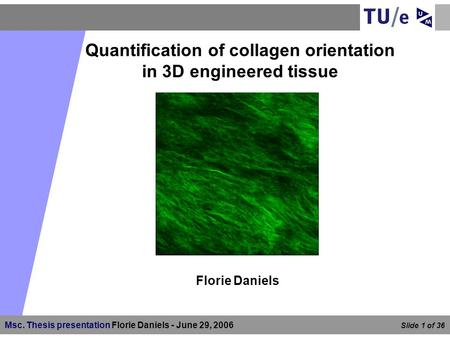 Quantification of collagen orientation in 3D engineered tissue