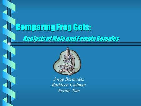 Comparing Frog Gels: Analysis of Male and Female Samples Jorge Bermudez Kathleen Cadman Nernie Tam.