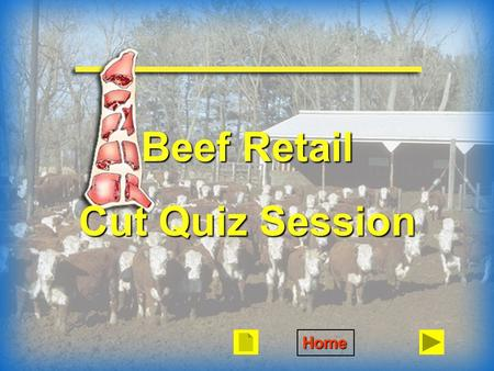 Beef Retail Cut Quiz Session Home. Arm Bone One Muscle.