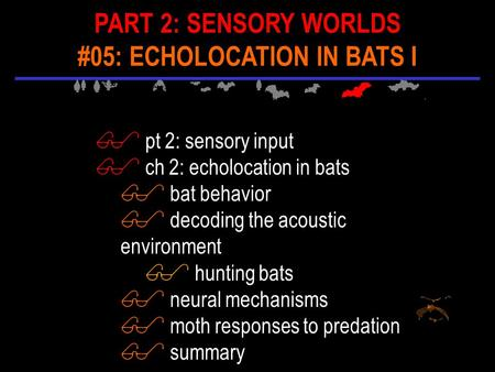 $ pt 2: sensory input $ ch 2: echolocation in bats $ bat behavior $ decoding the acoustic environment $ hunting bats $ neural mechanisms $ moth responses.