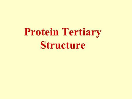 Protein Tertiary Structure. Primary: amino acid linear sequence. Secondary:  -helices, β-sheets and loops. Tertiary: the 3D shape of the fully folded.