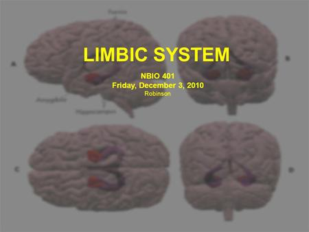 LIMBIC SYSTEM NBIO 401 Friday, December 3, 2010 Robinson.
