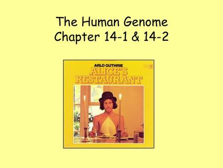 The Human Genome Chapter 14-1 & 14-2