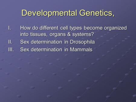 Developmental Genetics, I.How do different cell types become organized into tissues, organs & systems? II.Sex determination in Drosophila III.Sex determination.