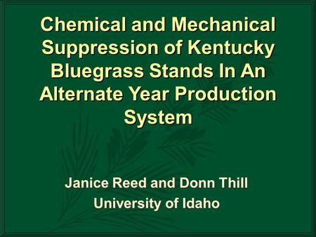 Janice Reed and Donn Thill University of Idaho Janice Reed and Donn Thill University of Idaho Chemical and Mechanical Suppression of Kentucky Bluegrass.