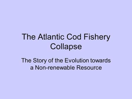 The Atlantic Cod Fishery Collapse The Story of the Evolution towards a Non-renewable Resource.