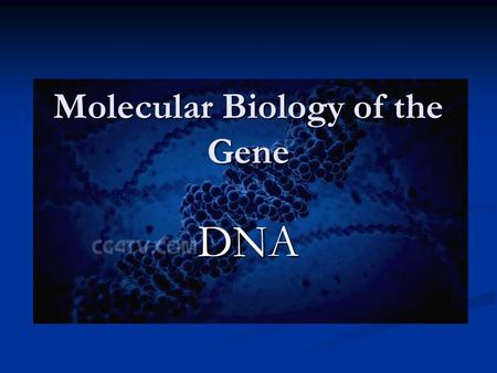 Molecular Biology of the Gene DNA. Identification of Genetic Material Identification of Genetic Material Structure of DNA Structure of DNA DNA Replication.