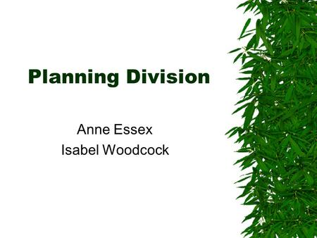 Planning Division Anne Essex Isabel Woodcock. Main Services  Admissions Monitoring  Annual Monitoring  Annual Review  Budget Devolution  Data Quality.