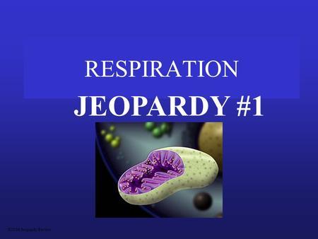 RESPIRATION JEOPARDY #1 S2C06 Jeopardy Review MitochondriaVocabMoleculesPathwaysMiscellaneous 100 200 300 400 500.