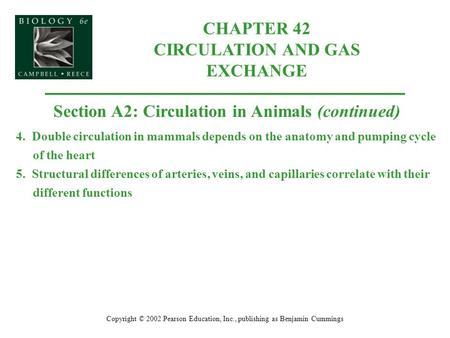 CHAPTER 42 CIRCULATION AND GAS EXCHANGE Copyright © 2002 Pearson Education, Inc., publishing as Benjamin Cummings Section A2: Circulation in Animals (continued)