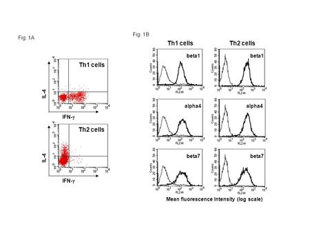 Th1 cellsTh2 cells beta1 beta7 alpha4 IFN-  IL-4 IFN-  IL-4 Th1 cells Th2 cells Mean fluorescence Intensity (log scale) Fig. 1A Fig. 1B.