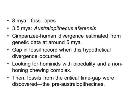 8 mya: fossil apes 3.5 mya: Australopithecus afarensis Cimpanzee-human divergence estimated from genetic data at around 5 mya. Gap in fossil record when.