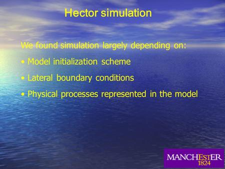 Hector simulation We found simulation largely depending on: Model initialization scheme Lateral boundary conditions Physical processes represented in the.