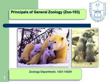 11 Principals of General Zoology (Zoo-103) Zoology Department, 1431-1432H.
