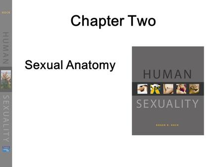 Chapter Two Sexual Anatomy.