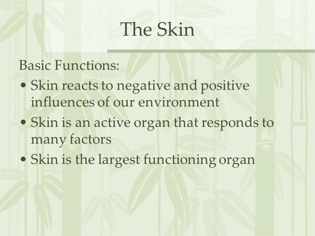 The Skin Basic Functions: Skin reacts to negative and positive influences of our environment Skin is an active organ that responds to many factors Skin.