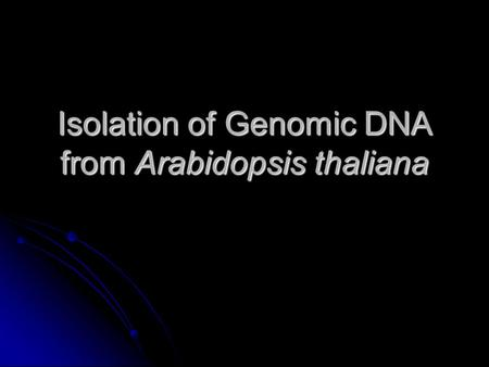 Isolation of Genomic DNA from Arabidopsis thaliana.