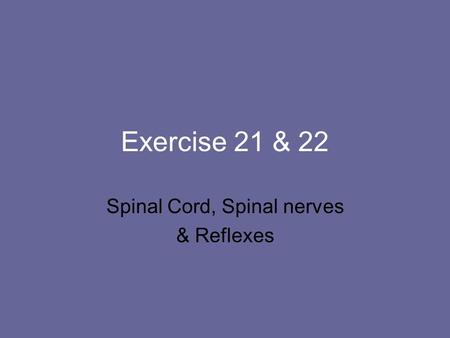 Spinal Cord, Spinal nerves & Reflexes