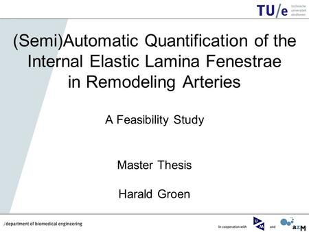 (Semi)Automatic Quantification of the Internal Elastic Lamina Fenestrae in Remodeling Arteries A Feasibility Study Master Thesis Harald Groen.