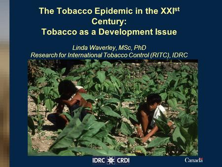 The Tobacco Epidemic in the XXI st Century: Tobacco as a Development Issue Linda Waverley, MSc, PhD Research for International Tobacco Control (RITC),