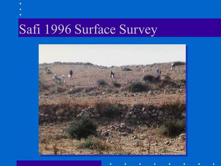 Safi 1996 Surface Survey. el-Far'ah South 1998 Survey.