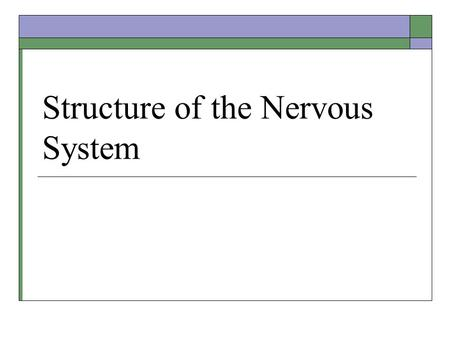 Structure of the Nervous System. Midterm Results.